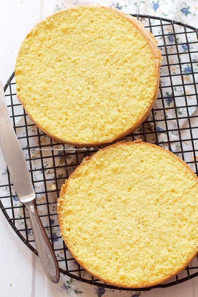 Interno soffice del pan di spagna - Ricetta Pan di spagna