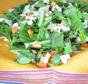 conservare le verdure fresche e cotte1