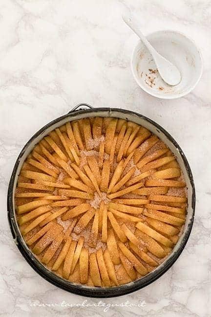 Cospargere la superficie con zucchero e cannella- Ricetta Torta di mele soffice