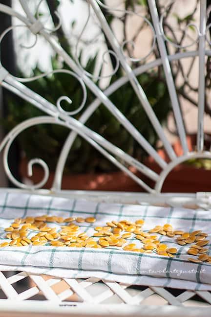 far essiccare i semi di zucca -Ricetta Semi di zucca tostati