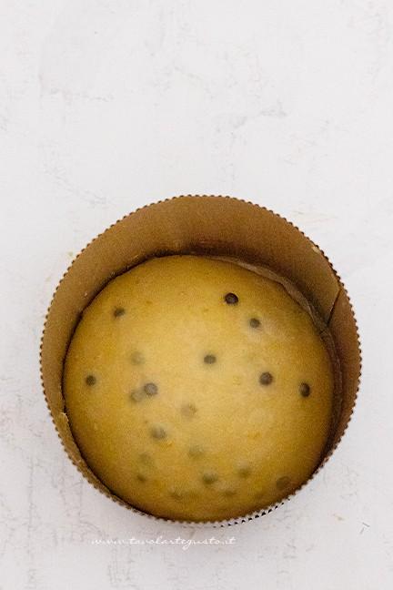 panettone al cioccolato in lievitazione