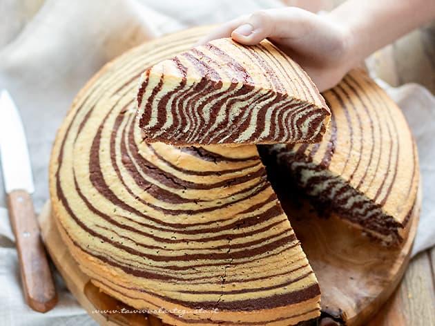 Torta zebrata - Ricetta Torta zebrata